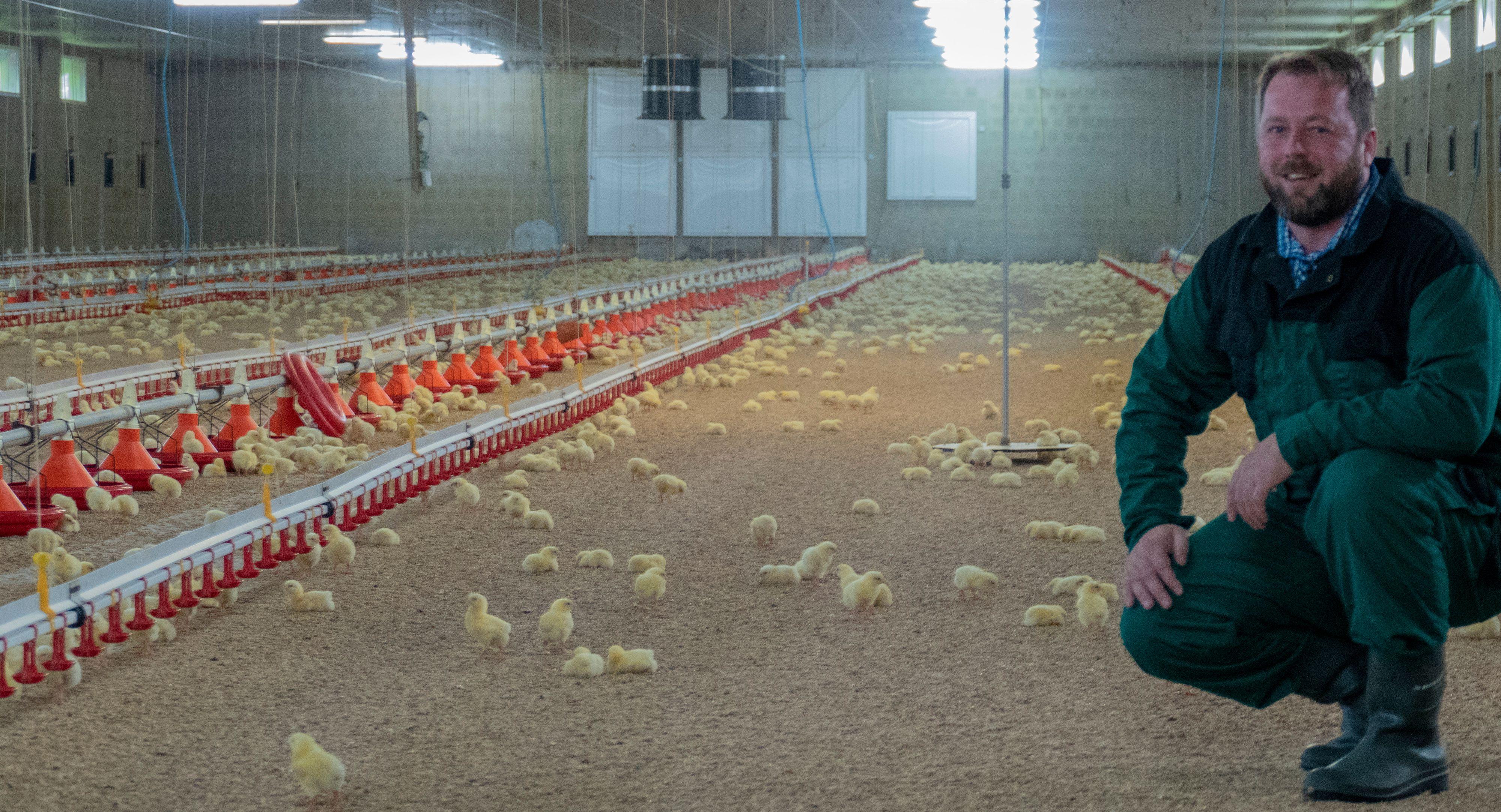 Unzufrieden: Hähnchenerzeuger wie Sven Diekhaus aus Friesoythe protestieren gegen das neue Arbeitsschutzkontrollgesetz, das derzeit im parlamentarischen Beratungsprozess ist und am 29. Oktober verabschiedet werden soll. Foto: Stix