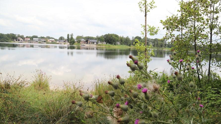 22 Meter tief: der Harkebrügger See. Foto: Passmann