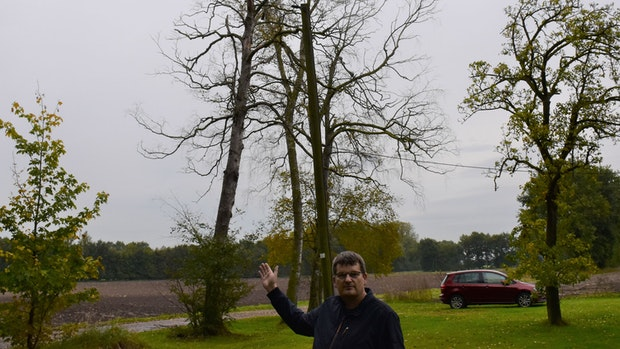Franz Greve beklagt das zunehmende Baumsterben