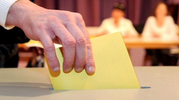 AfD will Kandidaten für Vechtaer Landratswahl aufstellen