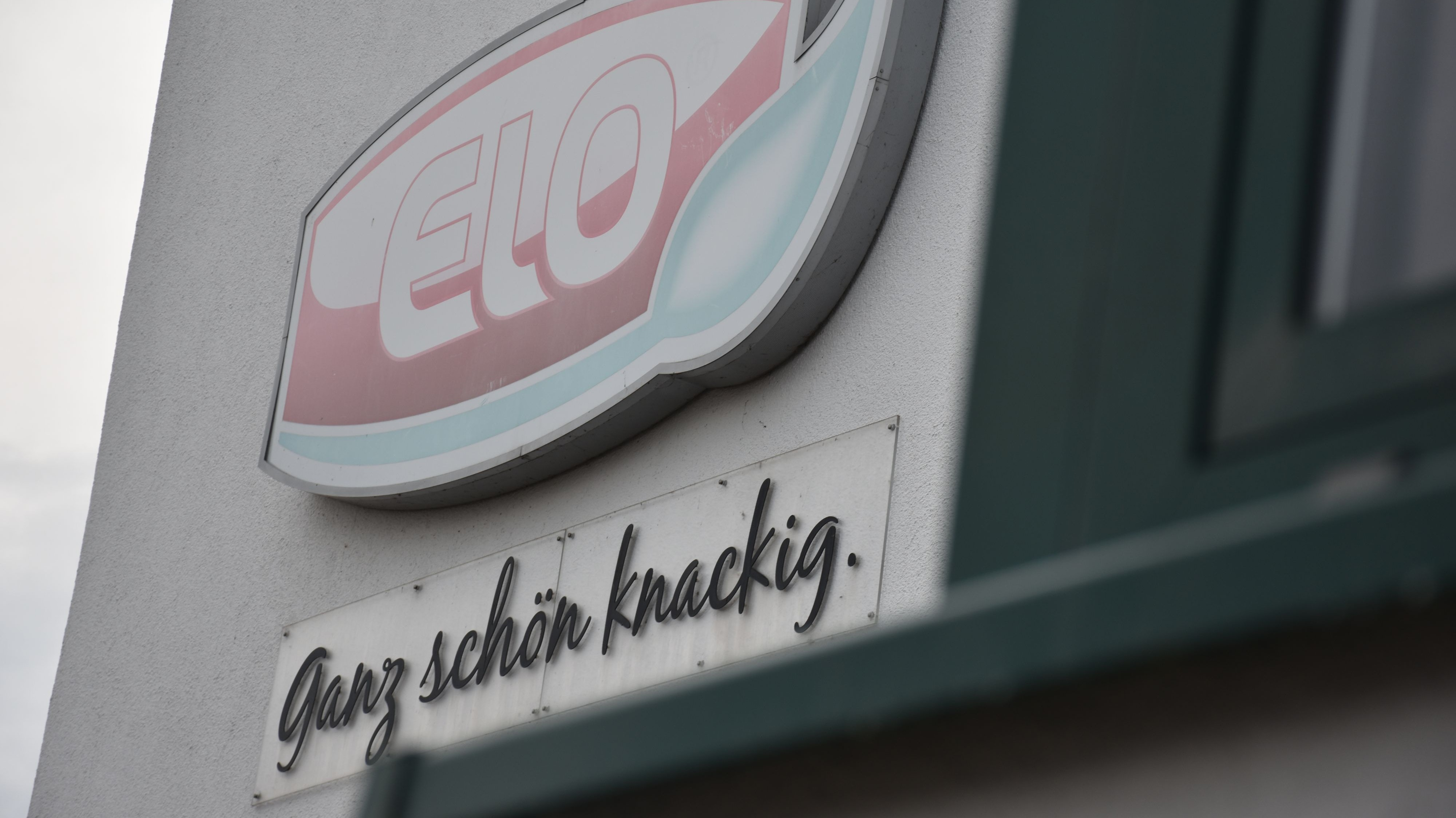 Wollen die gewöhnliche Menge an Grünkohl vertreiben: Das Unternehmen Elo aus Langförden vertreibt unter anderem tiefgekühltes Gemüse und Obst. Foto: M. Meyer