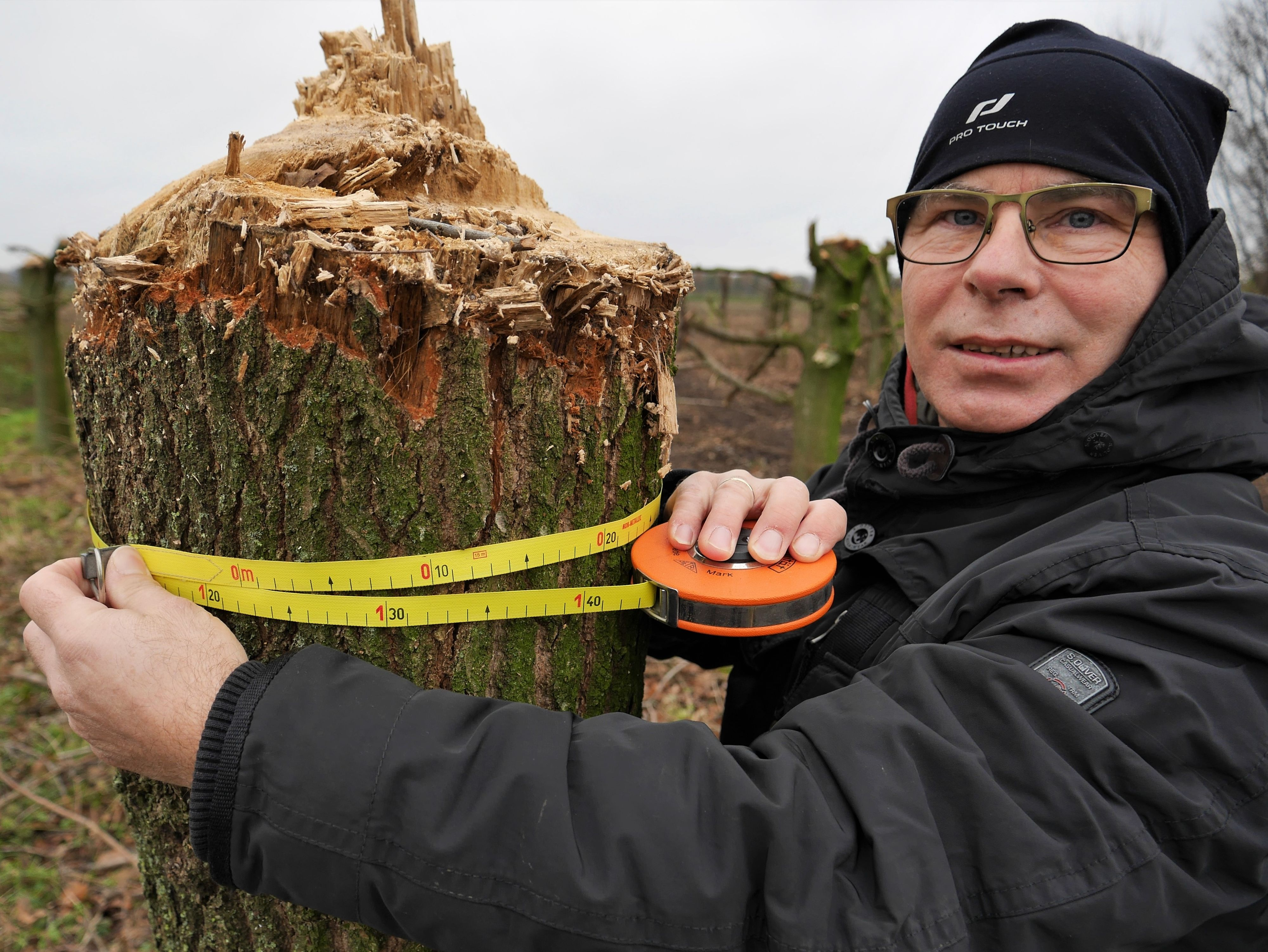 122 Zentimer Umfang misst Naturschützer Stefan Schulteder bei diesen unsachgemäß gekappten Baum, der wohl keine Überlebenschance hat. Foto: Schmutte