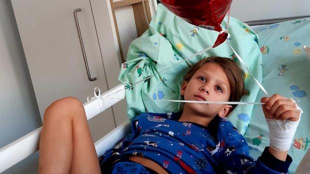 Gebissener Junge muss noch operiert werden