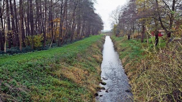 Mühlenbach fließt noch nicht in die Zukunft