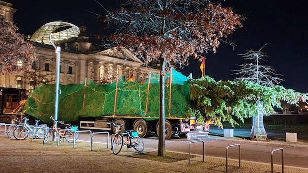 Südoldenburger Firma bringt Weihnachtsbaum zum Berliner Reichstag