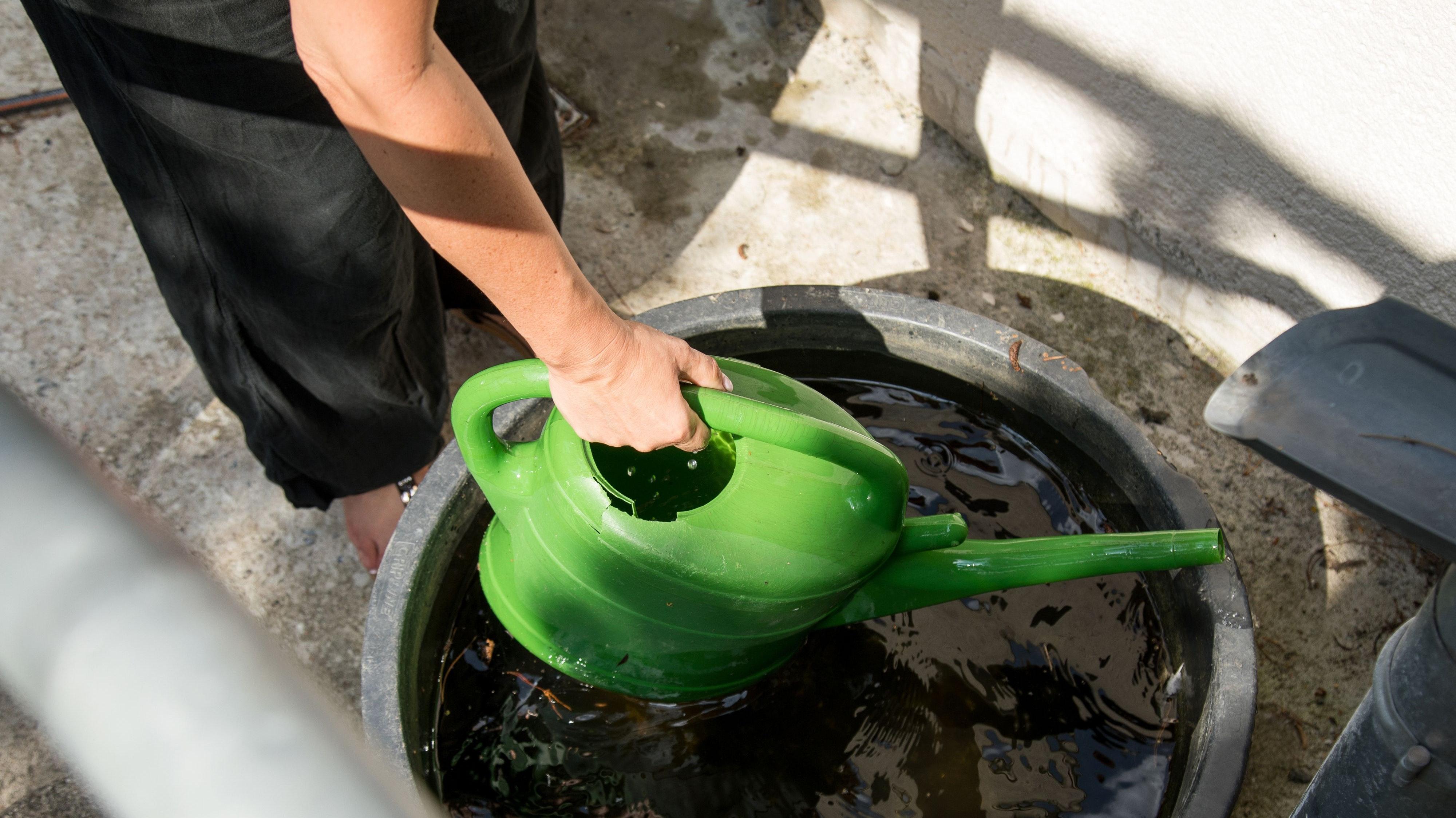 Speichern ist angesagt: Regenwasser zu sammeln, um es zum Beispiel zum Gießen zu verwenden, wollen die Stadt Damme und der OOWV unter bestimmten Voraussetzungen fördern. Foto: dpa/Klose