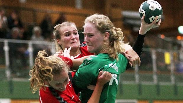 Handball: Oberligisten wollen eine Einfachrunde spielen