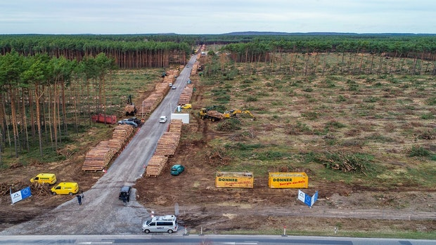 Gericht: Tesla muss Waldrodung in Grünheide vorerst stoppen