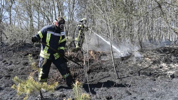 Moorbrand-Erfahrung hilft in Südlohne