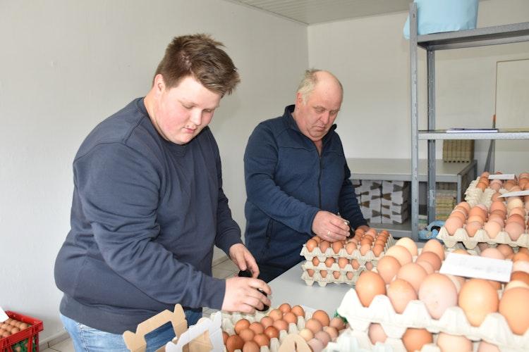 Handarbeit: Die Eier werden auf dem Hof gestempelt. Foto: Ebert