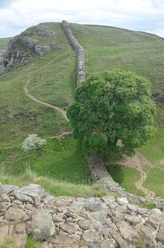 Auf und ab: Beim Wandernam Hadrianswall geht es auf der Strecke unweit der römischen Ausgrabungsstätten Vindolanda und Housesteads Hügel hinauf und wieder runter. Foto: dpaHeimann