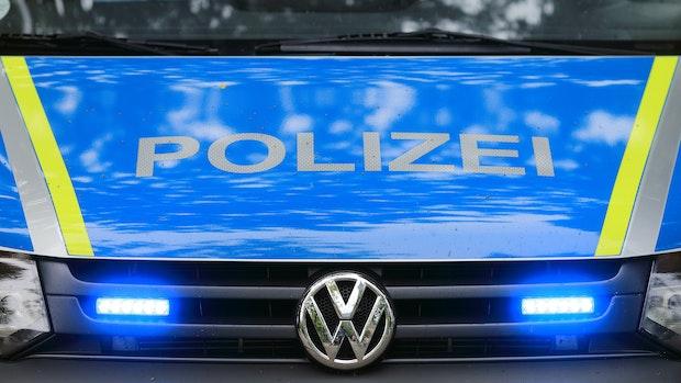 250 tote Schweine in Stall in Nikolausdorf entdeckt
