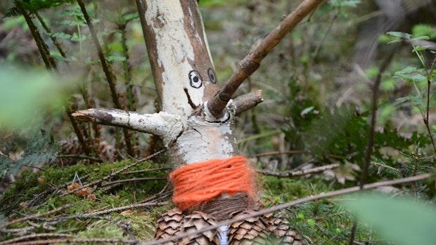 Waldfiguren sorgen für Lob und Kritik