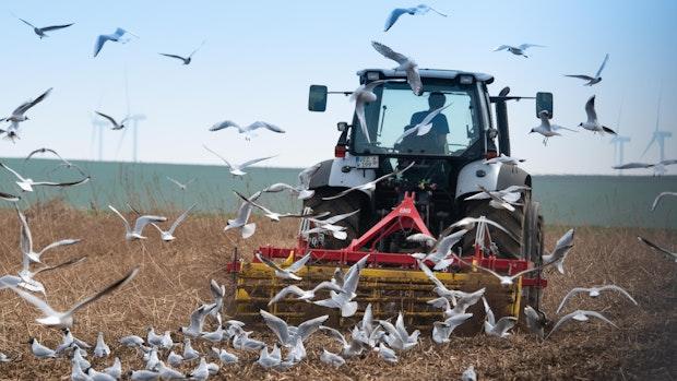 Plan der EU-Kommission stößt auf scharfe Kritik bei Landwirten