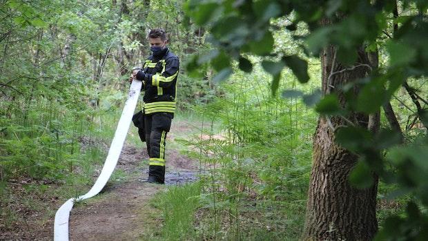 Feuerwehr hat Moorbrand schnell unter Kontrolle