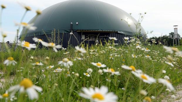 Biogasanlagenbauer Envitec steigert Gewinne