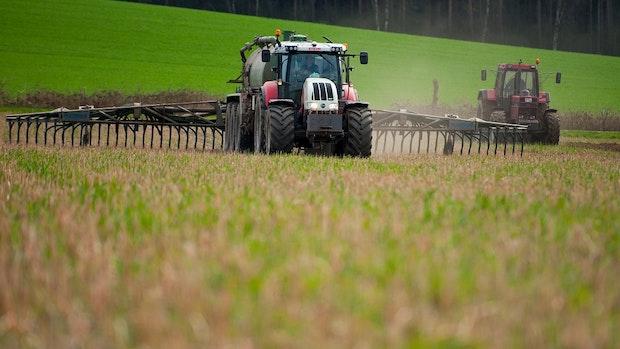 Grüne fordern härtere Strafen für Düngesünder