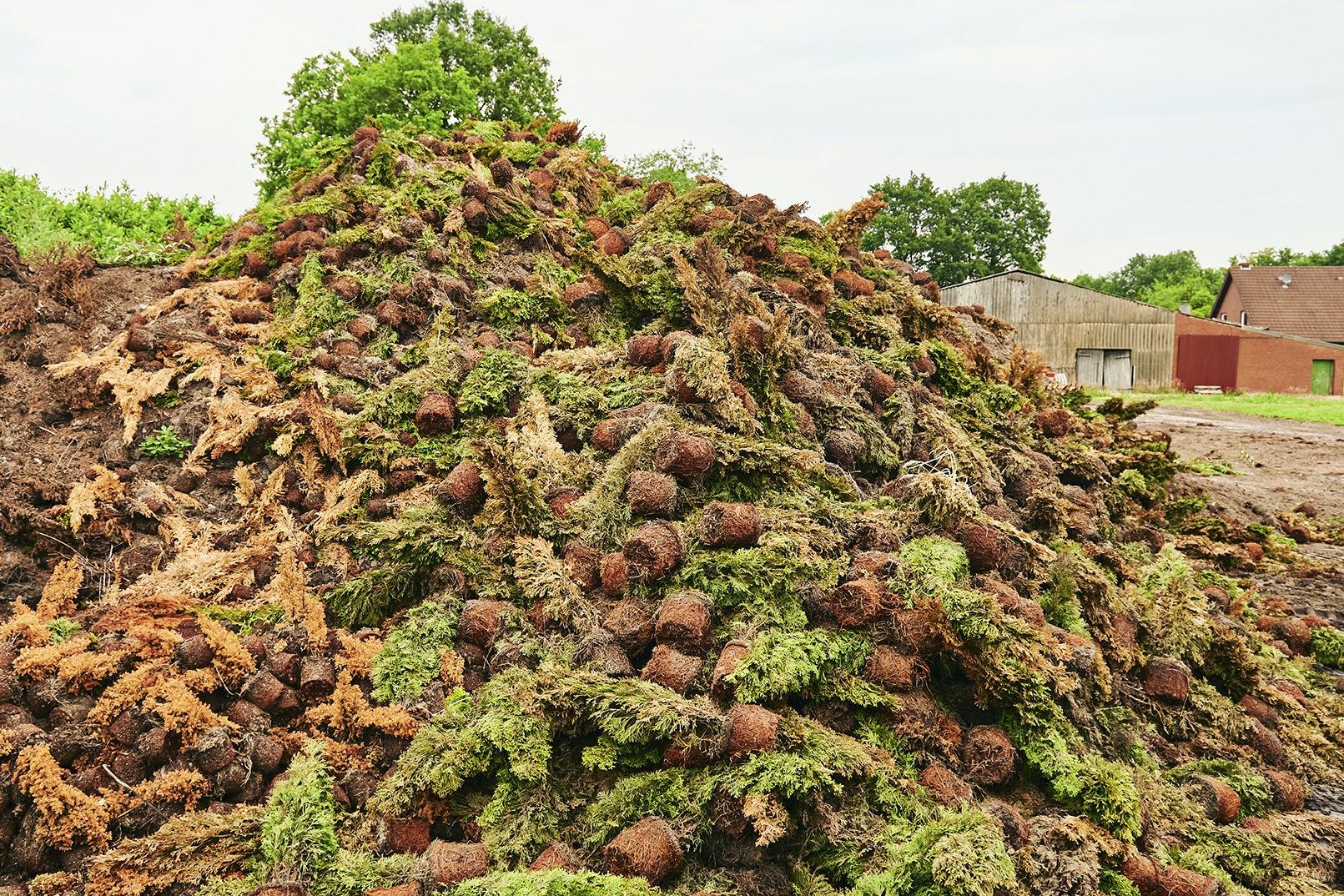 """Der """"Covid-19-Komposthaufen"""" der Baumschule Schlangen: sechs Meter hoch, 40 Meter lang und 1,4 Millionen Euro teuer.  Foto: © Foto- und Bilderwerk - <a href=""""http://www.bilderwerk.org/"""">www.bilderwerk.org</a>"""