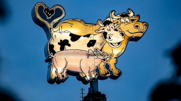 Tönnies verlagert Rinderzerlegung nach Badbergen