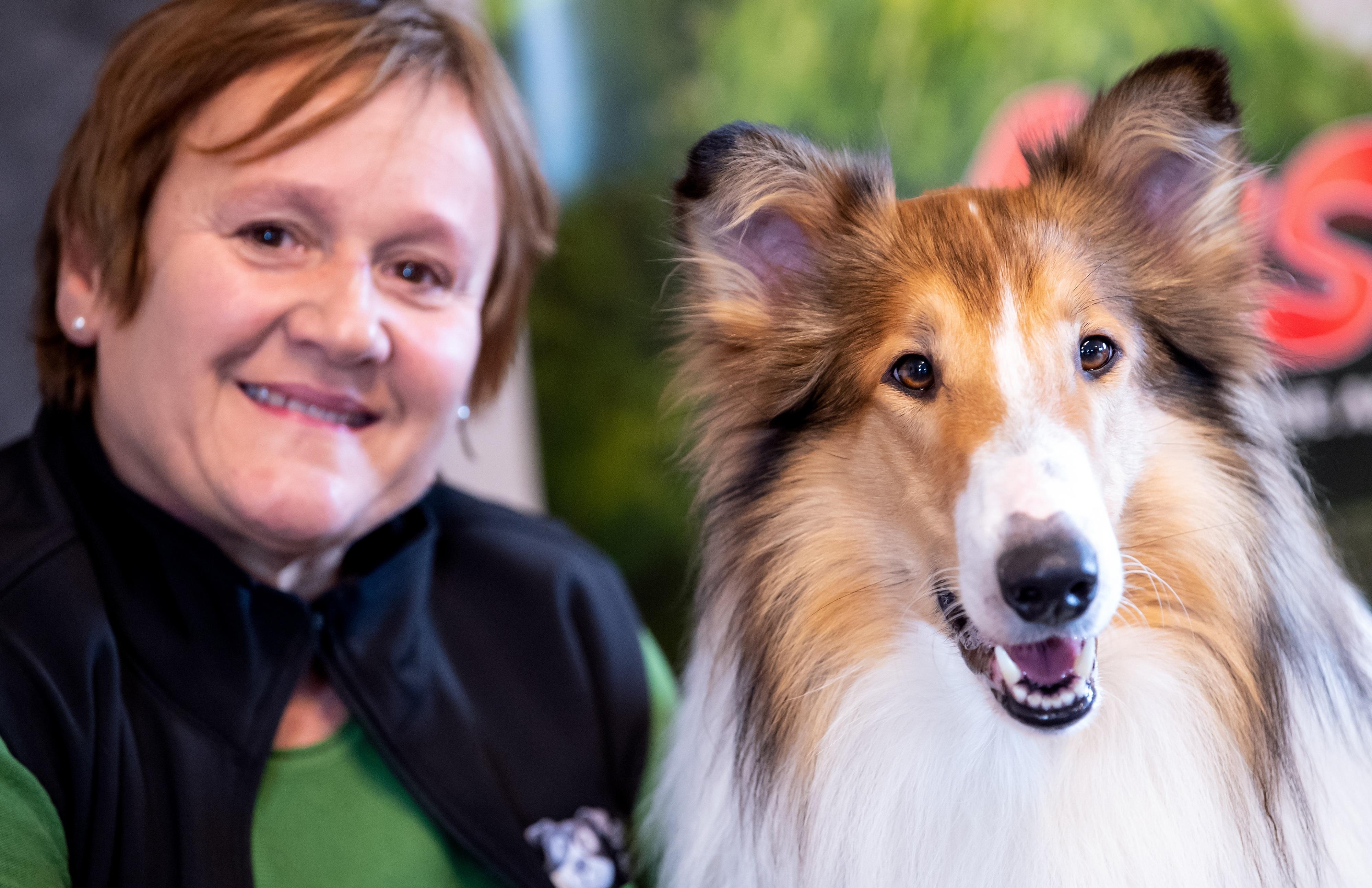 """Eingespieltes Team: Tiertrainerin Renate Hiltl hat """"Bandit"""" auf seine Auftritte im Film vorbereitet. Sie hat den Collie bei Doris Rode-Rosga in Berge gekauft. Foto: dpa / Hoppe"""