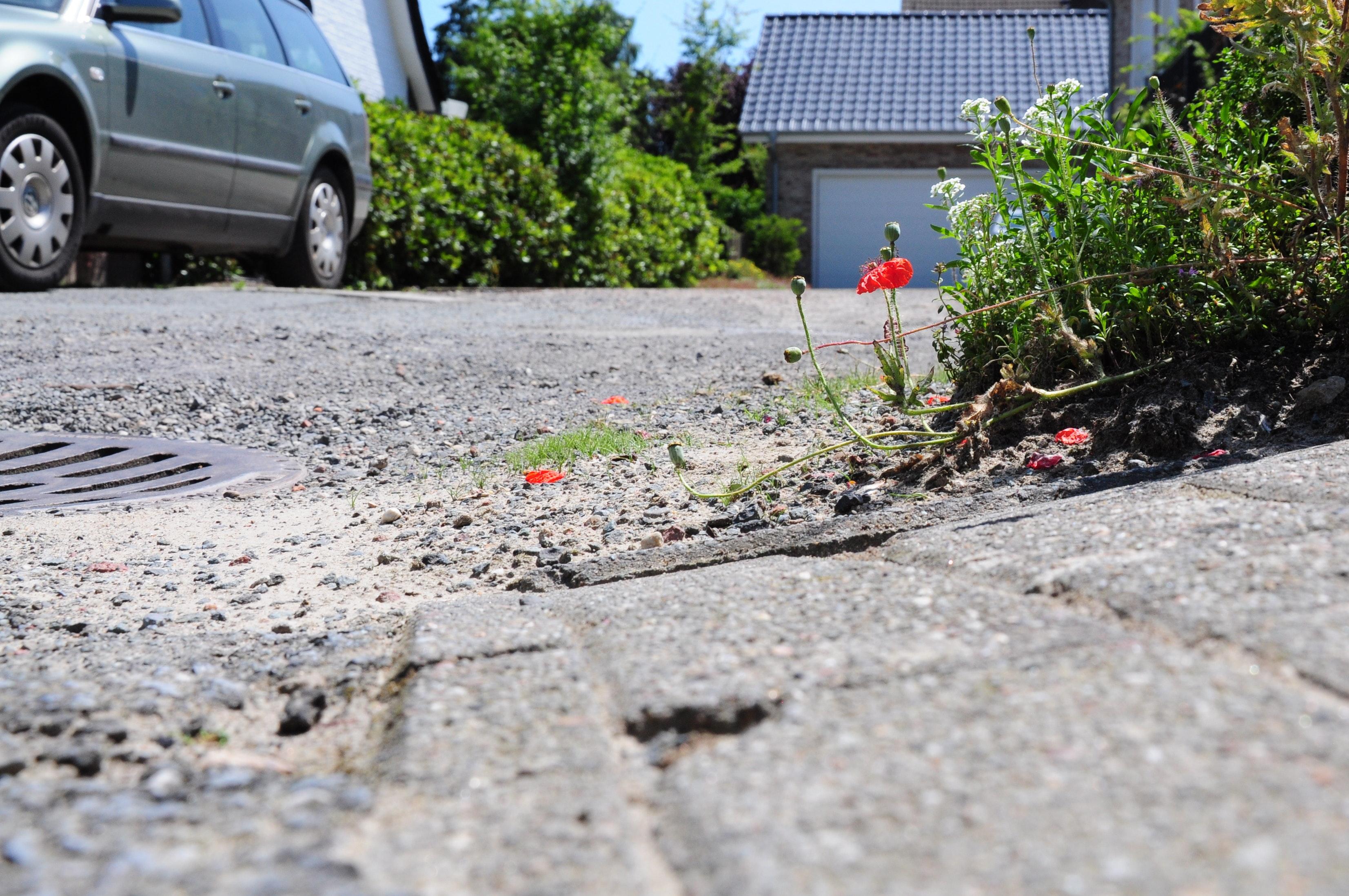 Schief und lose: Den winzigen Wendehammer wollen zwei Nachbarn lieber eigenhändig pflastern (lassen), weil ihnen die Kostenberechnung der Stadt viel zu hoch erscheint. Foto: Kreke