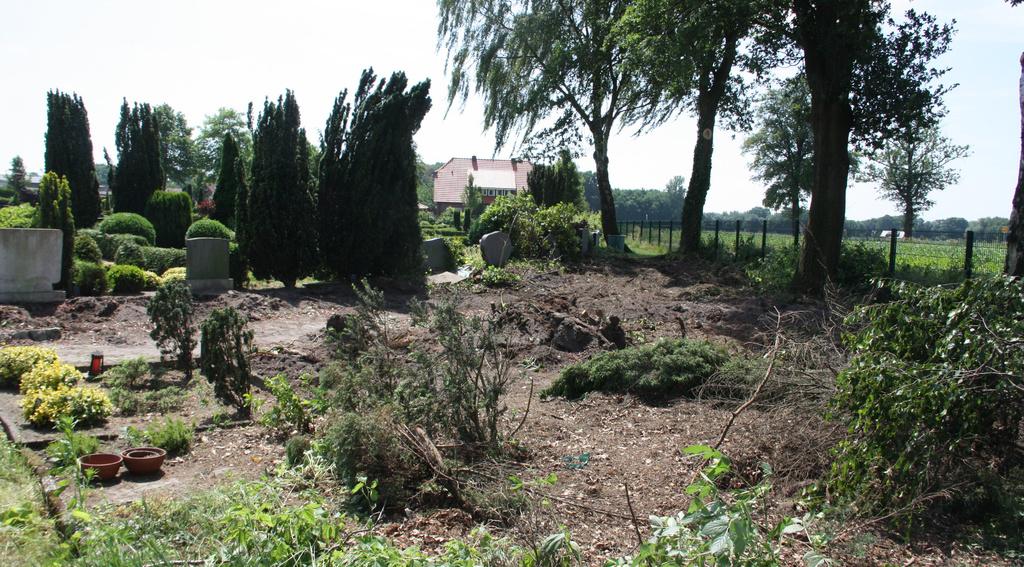 Der Fundort: An dieser Stelle auf dem katholischen Friedhof stieß Josef Arlinghaus bei Baggerarbeiten auf Bargeld und Goldmünzen. Foto: Honkomp
