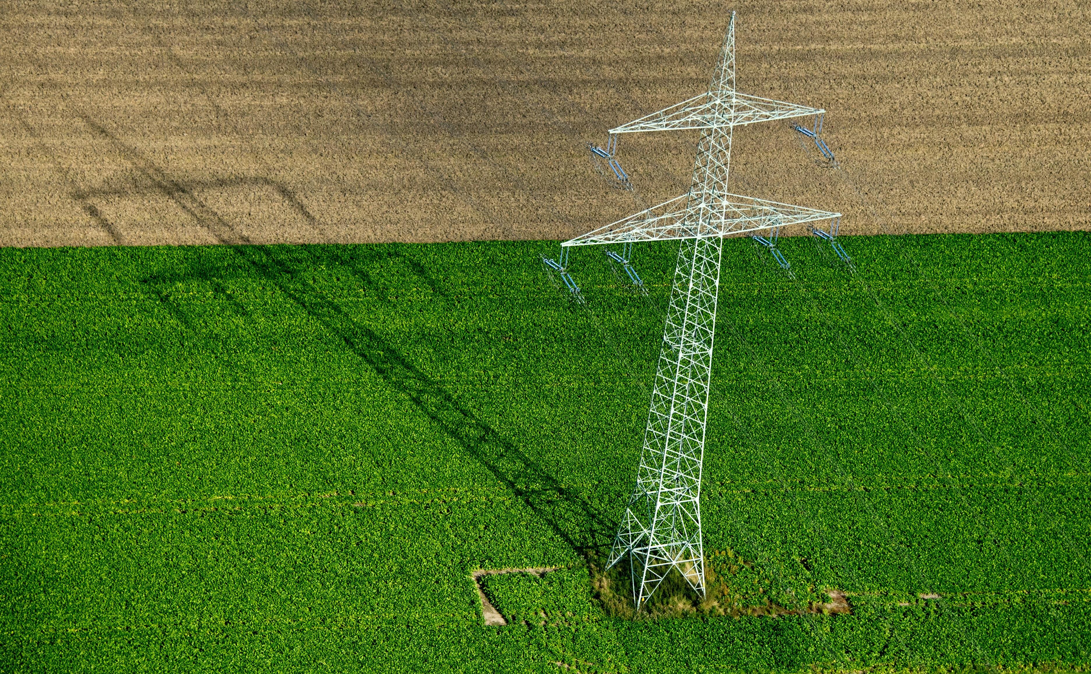 Strommast auf dem Acker: Die Landvolkverbände fordern höhere Entschädigungen für betroffene Landwirte. Foto: dpa