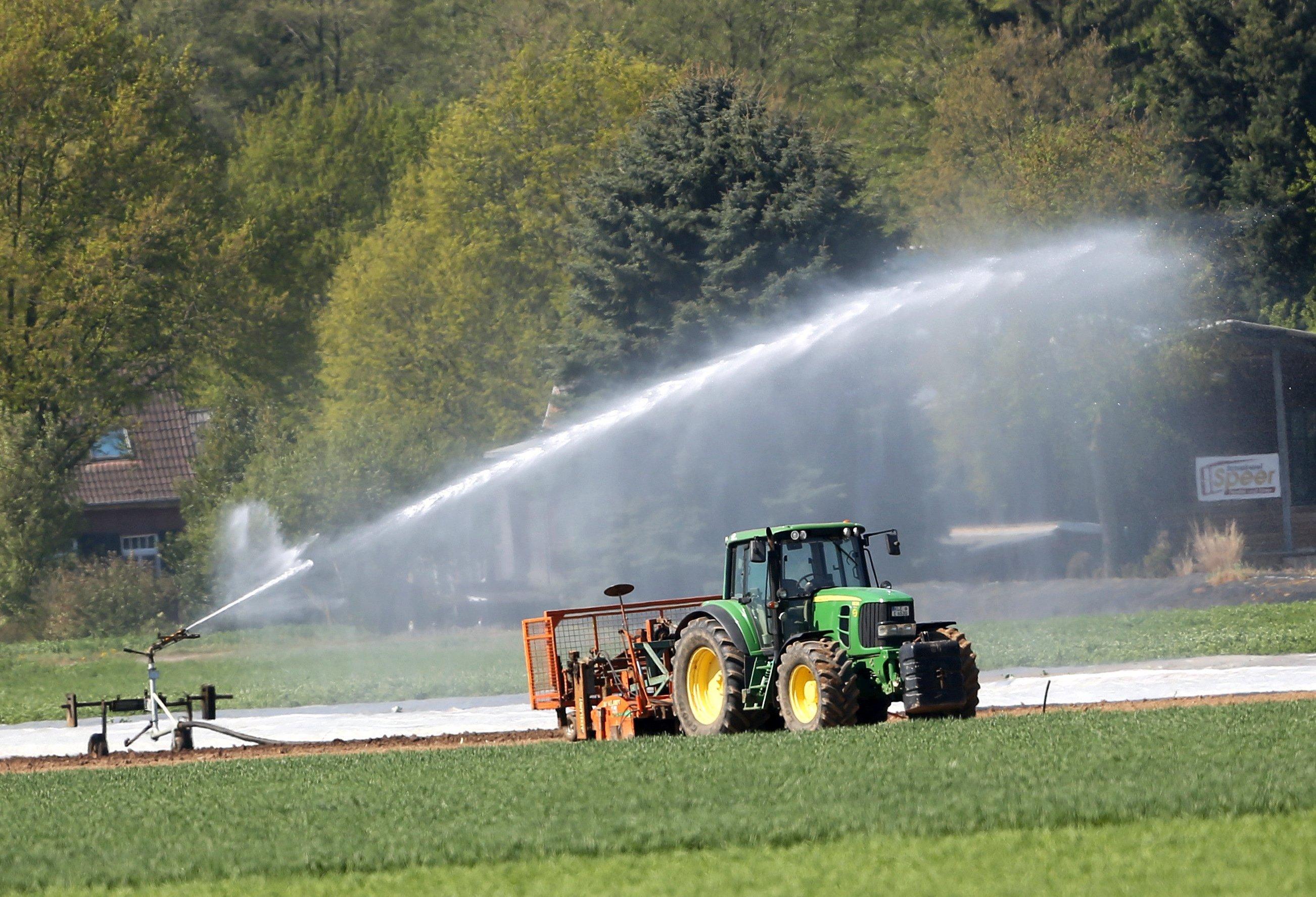 Ausgenommen seien unter anderem Gartenbaubetriebe, die ihre Topfpflanzen mit Mikro- und Tröpfchenbewässerung auch in der Mittagshitze feucht halten müssten. Foto: dpa / Weihrauch