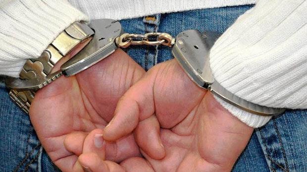 Polizei schnappt mutmaßliche Diebesbande