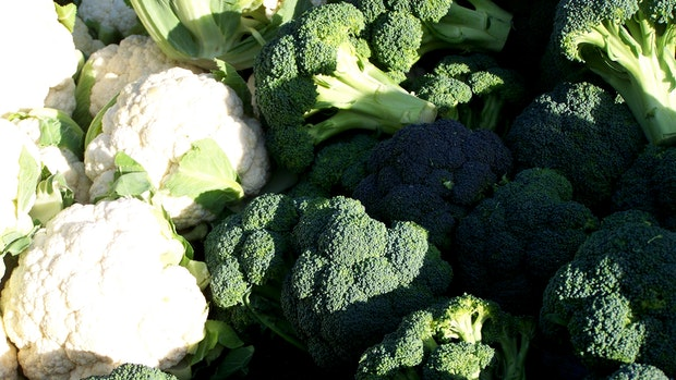 Projekt soll Verschwendung von Gemüse Einhalt gebieten