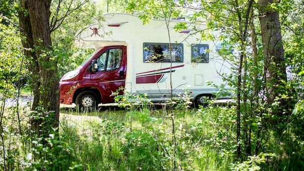 Mit dem Zelt in den Wald? - Die Rechtslage beim Wildcampen
