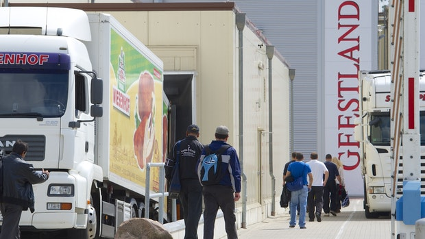 Nach Corona-Ausbruch: Geestland schlachtet wieder