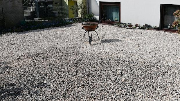 """""""Schottergärten"""" bleiben umstritten"""