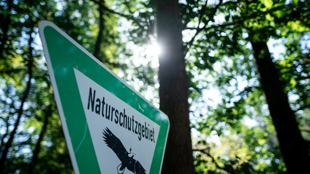 Naturschutz: Landrat will Ministerium einschalten
