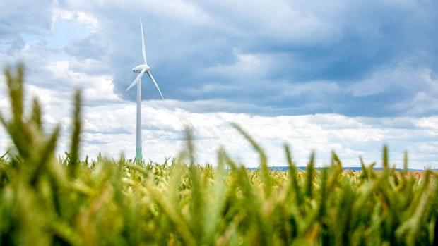 Ausbau der Windkraft kommt in Niedersachsen leicht voran