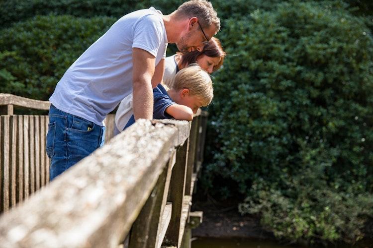 Sommerfreuden in Dinklage: Es lohnt sich mehr als nur ein Blick.Foto: Markus LöchtemalopoStockwerk2Verbund Oldenburger