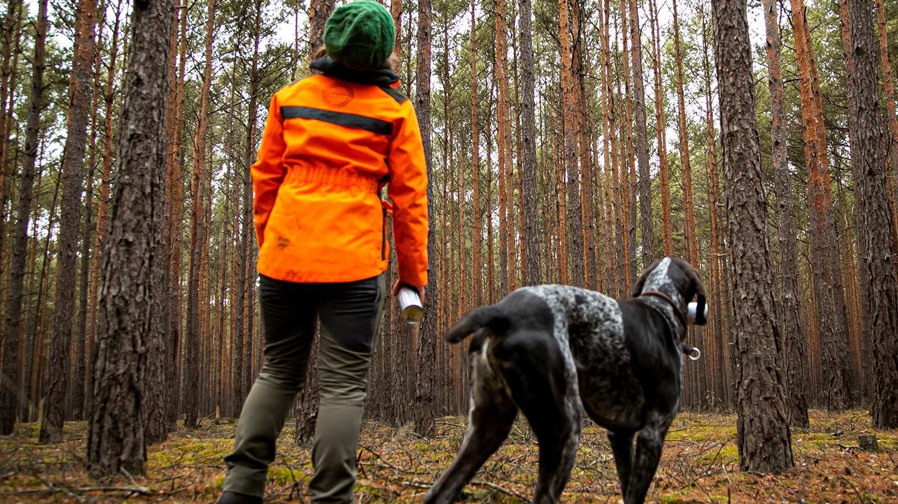 Dürre, Hitze und Stürme setzen dem Wald zu: Die IG BAU fordert mehr Forstpersonal, um den klimagerechten Umbau heimischer Wälder voranzubringen. Foto: IG Bau
