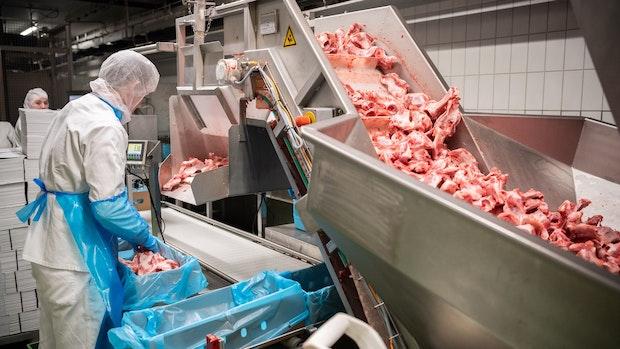 Schärfere Regeln für Fleischbranche sind auf dem Weg