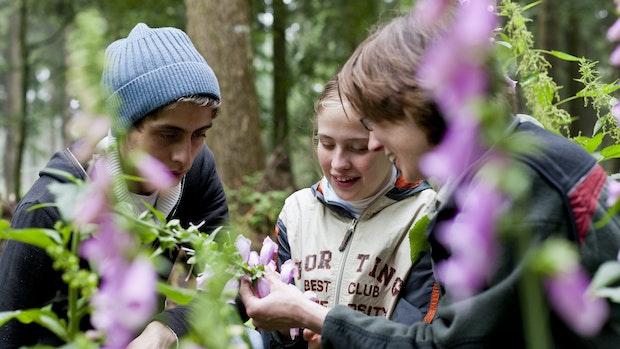 Kinder erforschen Flora und Fauna