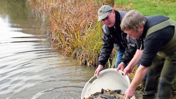 Löninger Fischer dürfen aufatmen