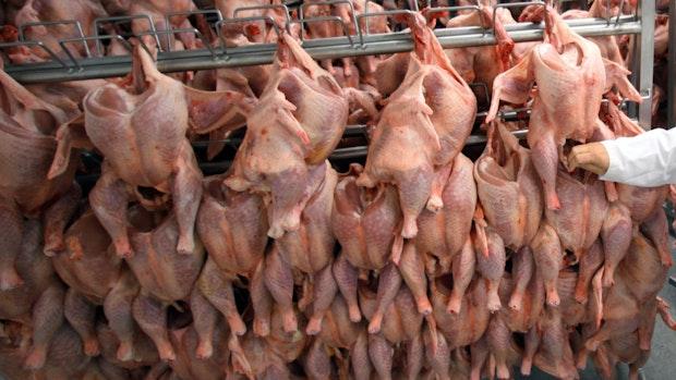 Fleischbranche: Gewerkschaft warnt Beschäftigte vor Falle