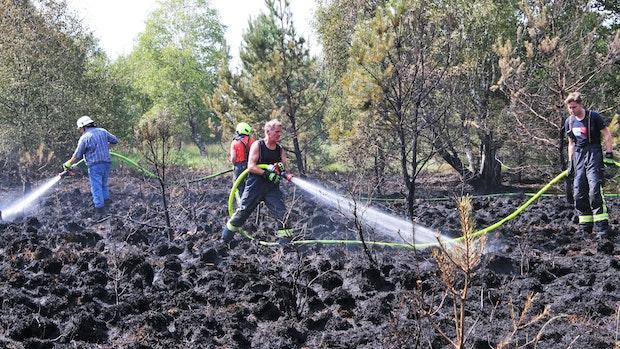 100 Feuerwehrleute kämpfen gegen Brand im Vehnemoor