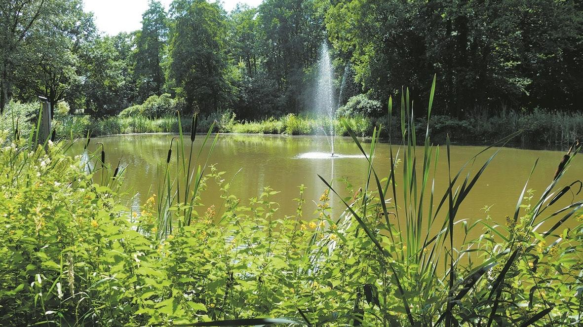 Der kleinste See: der Fischteich im Stadtpark. Foto: Stix