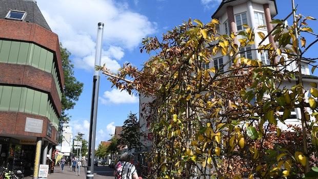 Trotz Mahnung: Stadtgarten vertrocknet