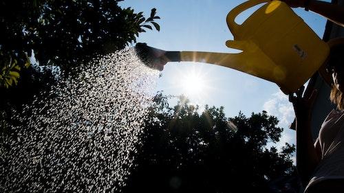 Trinkwasser ist nicht zum Rasensprengen da