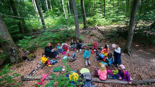 Projekt Waldkindergarten verschiebt sich