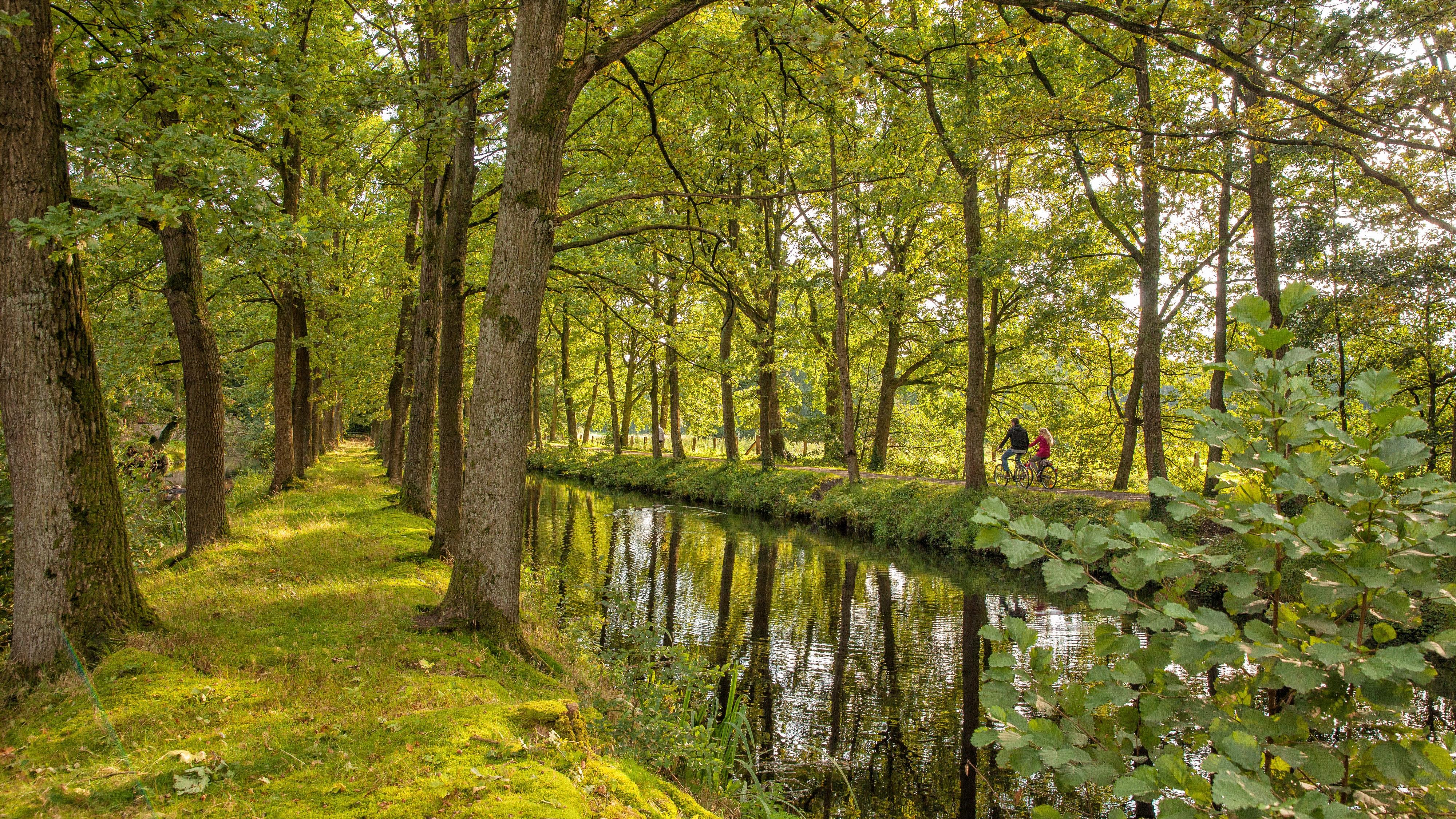 Ein beliebtes Ausflugsziel: der Dinklager Burgwald. Foto: Malapo