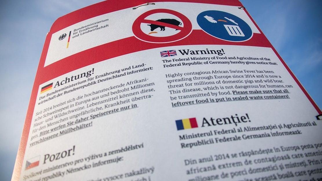 Warntafel an der Autobahn: Aushänge des Bundesministeriums für Ernährung und Landwirtschaft warnen vor der Afrikanischen Schweinepest, die auch durch Lebensmittel übertragen werden kann. Foto: Jens Büttner / dpa