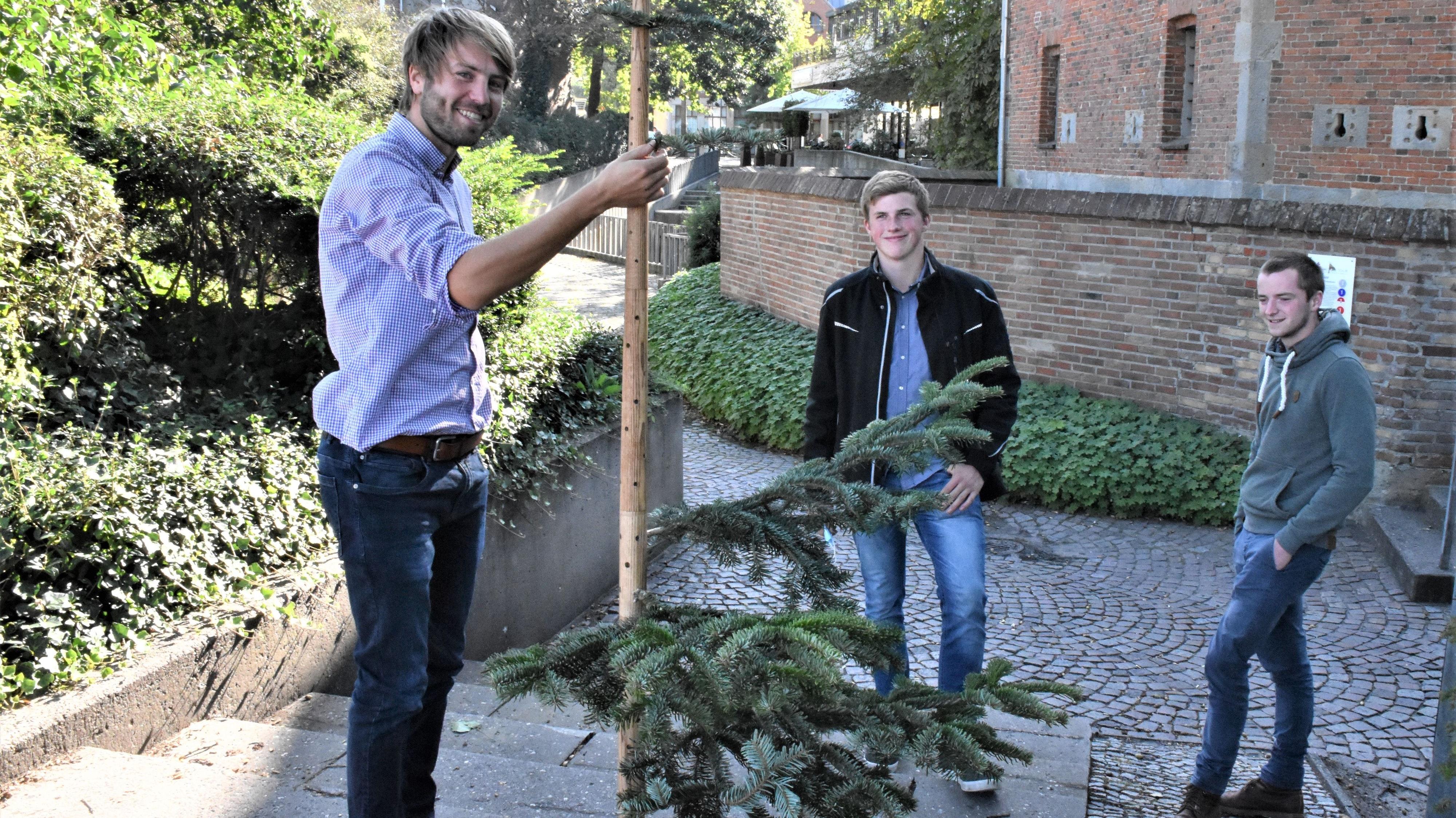 """Schon beim Probeaufbau des """"Keinachtsbaumes"""" durch Sven Lake (links) am Kaponier in Vechta fanden sich interessierte Beobachter. Foto: Kühn"""