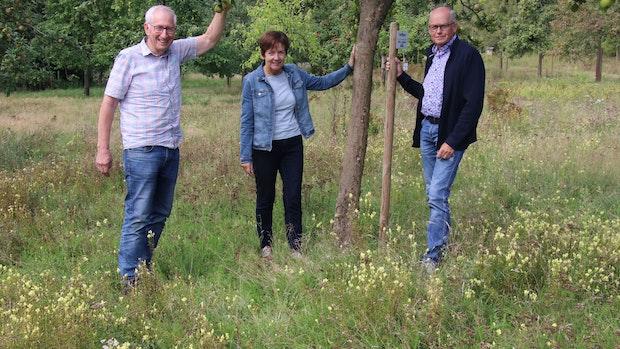 Naturschützer fordern mehr Wildwiesen